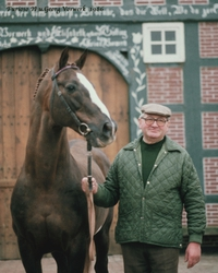 1968: With the introduction of Furioso II, Georg Vorwerk, the third generation stallion keeper, began a new era in European Warmblood breeding.